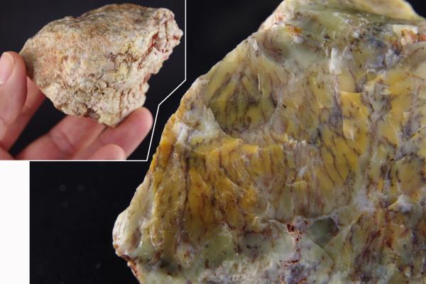 デンドリティックカルセドニー原石