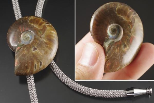 ループタイ 化石アンモナイト
